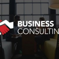 Fitzgerald Consulting - Business Consultant