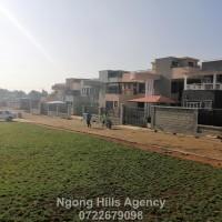 Ngong Hills Agency