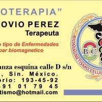 BIOMAGNETISMO MEDICO MAZATLAN