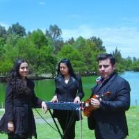 Opus Nuovo Musica Misas