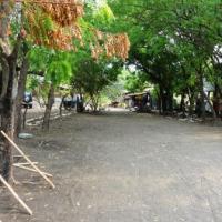 Hostal Los Cocos Surf School · Doble su dinero en vacaciones.