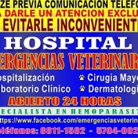 Emergencias Veterinarias