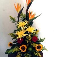 Floristería El Tulipan