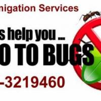 Friends Fumigation Services