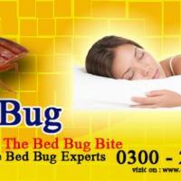 callncall pest control services