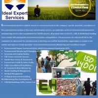 Ideal Expert Services