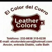 El Color Del Cuero S A