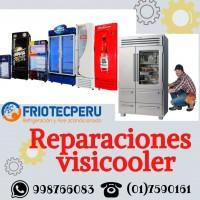 Calidad Especialistas en VISICOOLER 7590161 - Miraflores