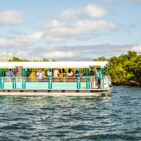 Paddle Pub Miami