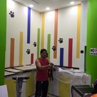 The Color Culture Pte Ltd