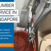 SG Plumbing