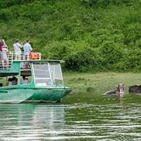 Uganda Budget safaris