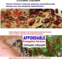 Affordable Fumigator on 0757514499