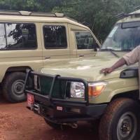 Steady Safaris Limited