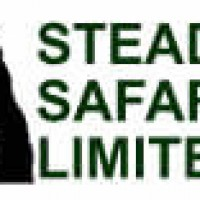 Steady Safaris Limited