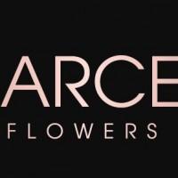 Darcey Flowers