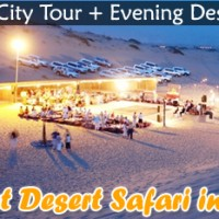 Morning Desert Safari Tour at Bookdubaitrip