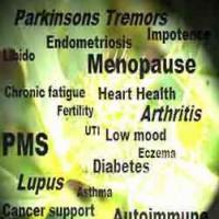 Herbal Abode-Medical Herbalist