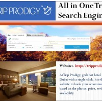 All in One Travel Search Engine