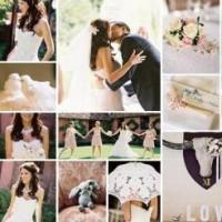 Tigerlily Weddings