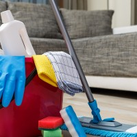 Springfield Cleaning Services