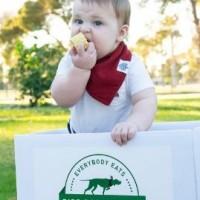 Bird Dog Veggie Foods Delivery