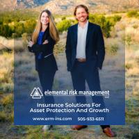 Elemental Risk Management