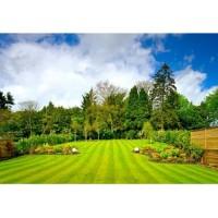 Premier Landscaping Inc.