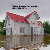 Rhino Restoration | Water Damage Restoration Harris County
