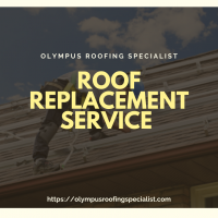 Olympus Roofing Specialist | Long Beach