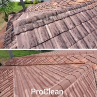 Tampa Bay Roof Cleaning
