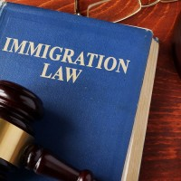 Immigration Legal Consulting