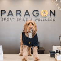 Paragon Sport Spine & Wellness