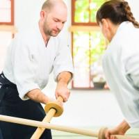 Hayashi's Martial Arts Academy