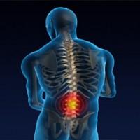 Alvis Chiropractic