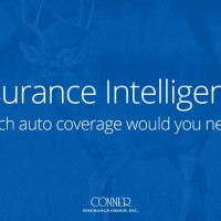 Conner Insurance Group