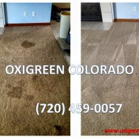 Oxigreen Colorado