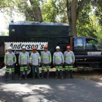 Andersons Tree Care