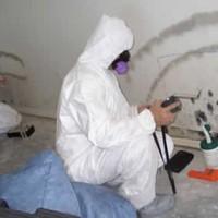 Charleston Mold Removal - Nano Environmental Solutions