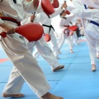 Maximum Martial Arts Center