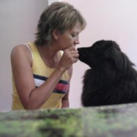 Pawz For Health In Home Dog Training