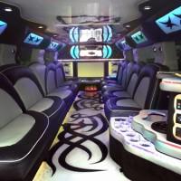 The Boston Party Bus