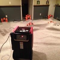 911 Restoration of Louisville