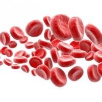 Stem Cell Arthritis