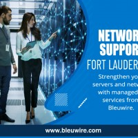 Bleuwire IT Services