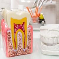 Andrew Bae DDS | Dentist Fort Lee | Fort Lee Dentist