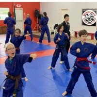Bushi Ban Martial Arts & Fitness - League City