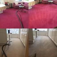 Boca Carpet Cleaner