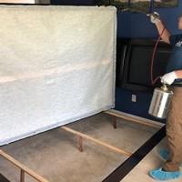Goodyear Bed Bug Expert