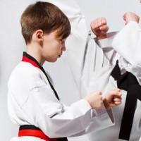 Bushi Ban Martial Arts & Fitness